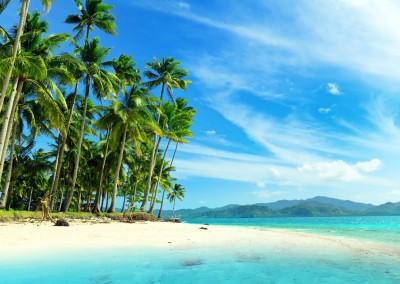 St Lucia, Martinique & Dominica