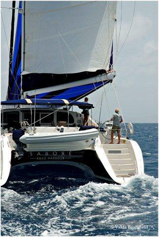 Catamaran Sabore  7
