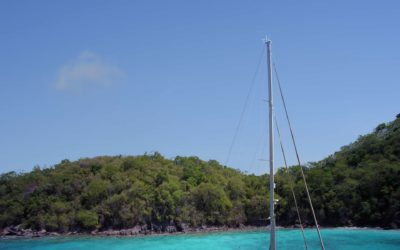 50% Discount On S/Y Champagne Hippy